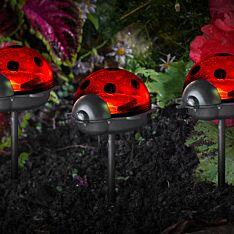 Solar Ladybird Stake Light, 6 Pack