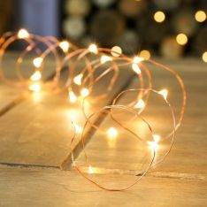 2m Battery Copper Firefly Wire Fairy Lights, 20 Warm White LEDs