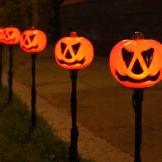Outdoor Battery Halloween Pumpkin Stake Lights, 5 Pack